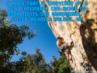 A mind that is stretched by a new experience can never go back to its old dimensions. – Oliver Wendell Holmes, Jr.