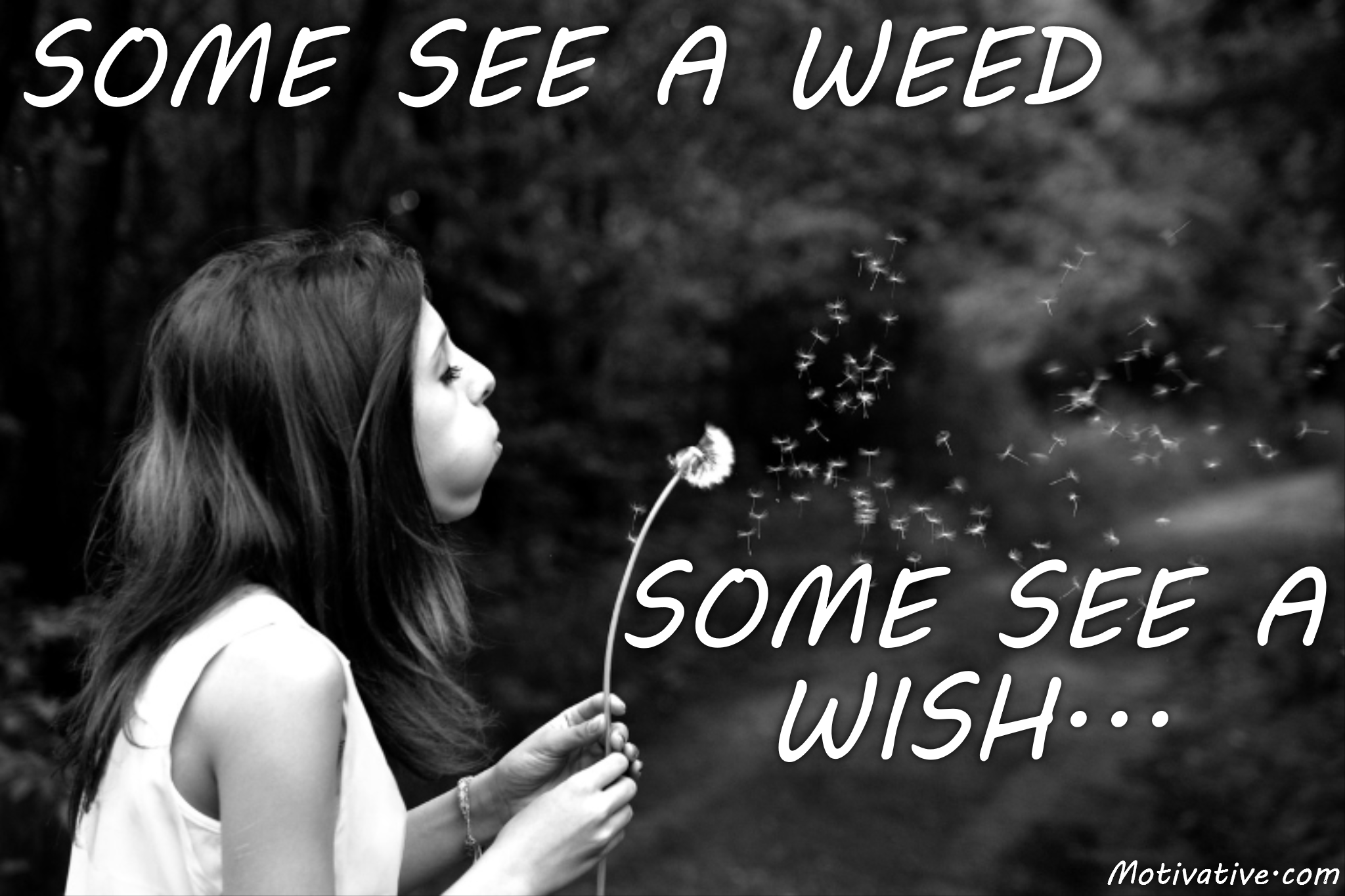 Some See A Weed – Some See A Wish…