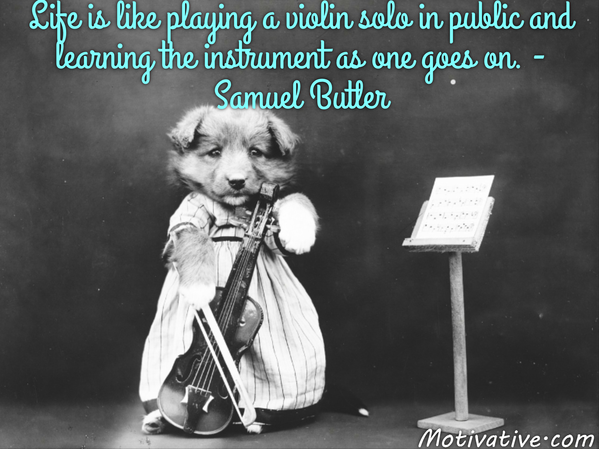 Life is like playing a violin solo in public and learning the instrument as one goes on. – Samuel Butler