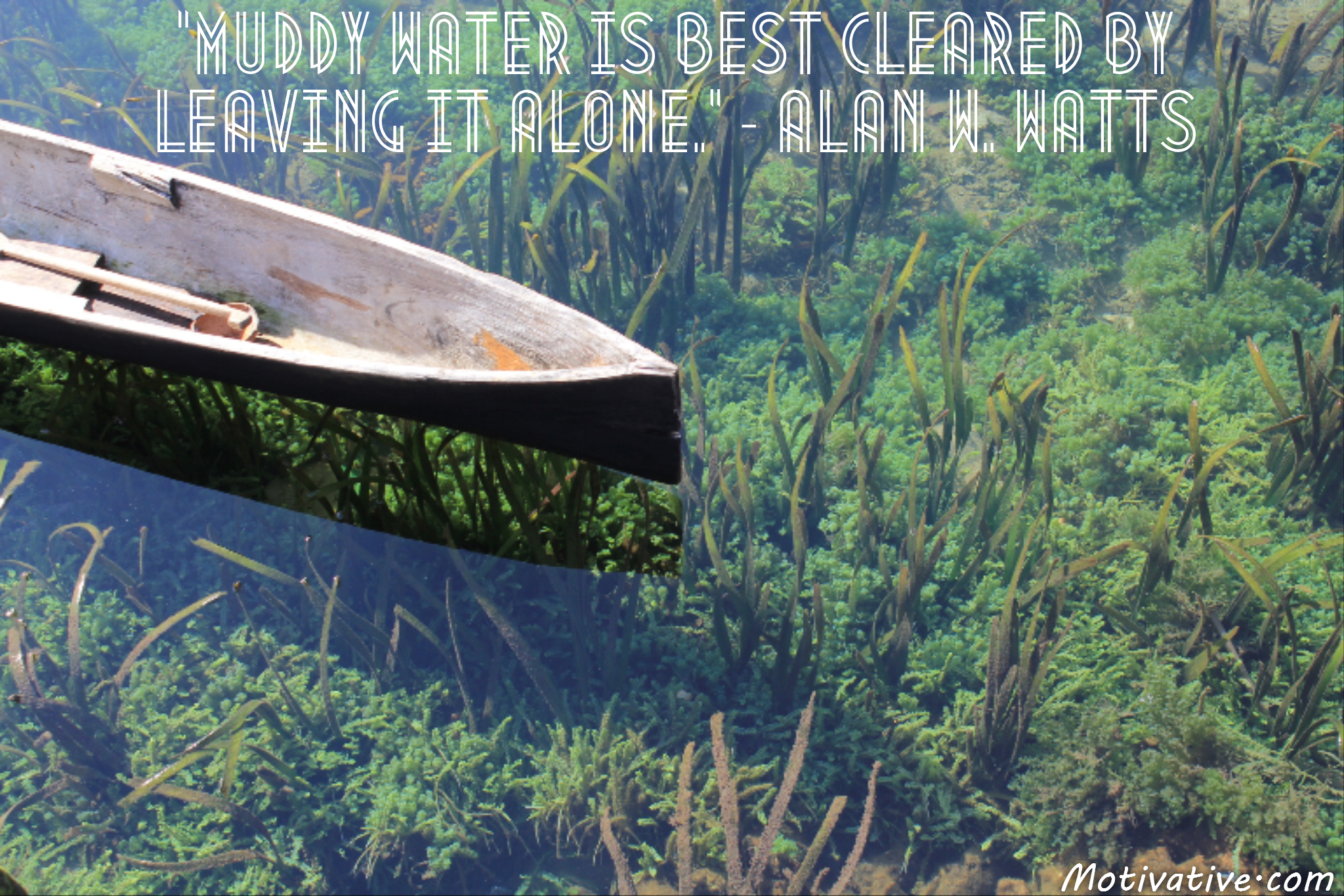 Muddy water is best cleared by leaving it alone. – Alan W. Watts