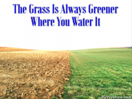 The Grass Is Always Greener Where You Water It