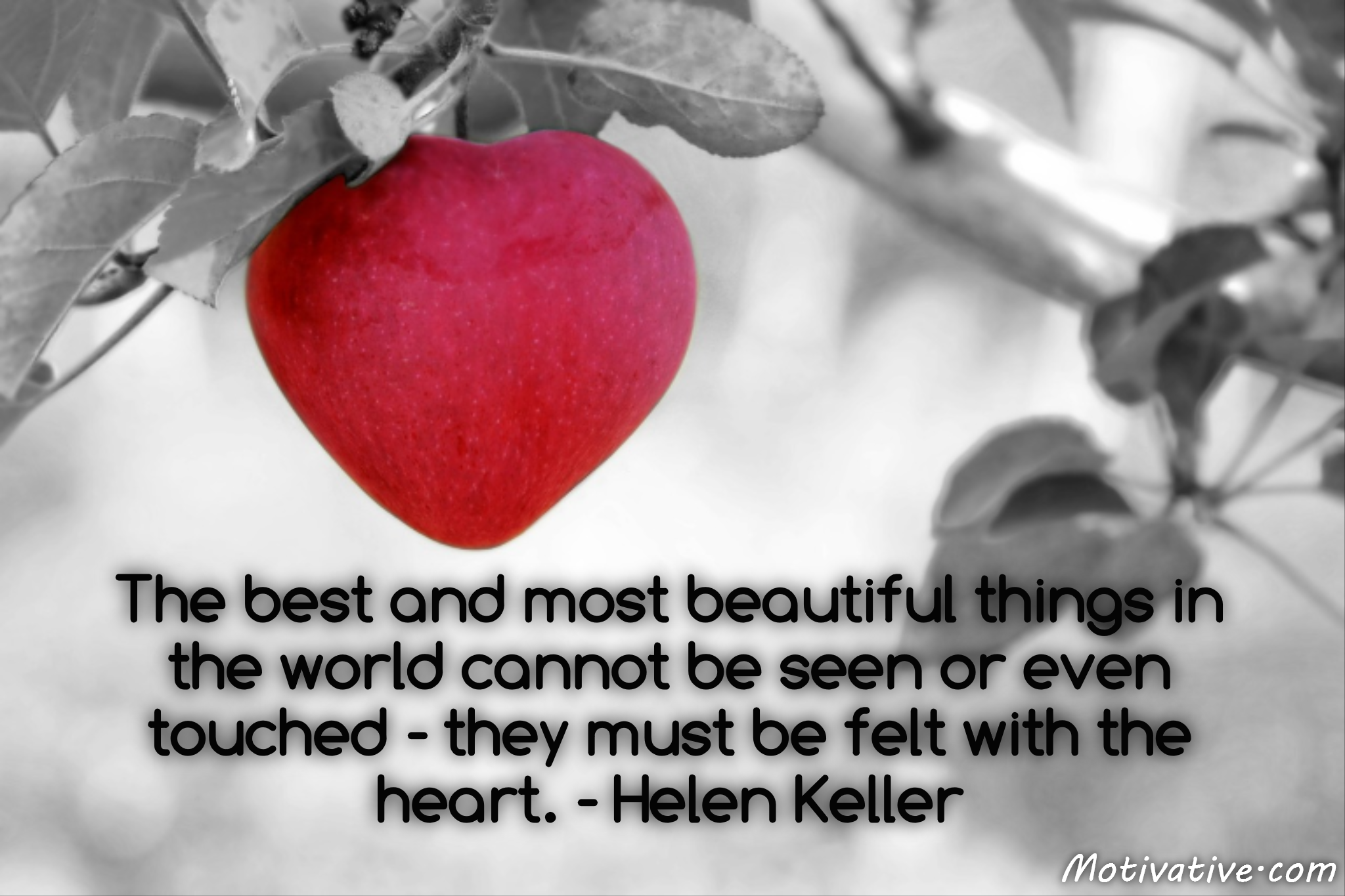The best and most beautiful things in the world cannot be seen or even touched – they must be felt with the heart. – Helen Keller