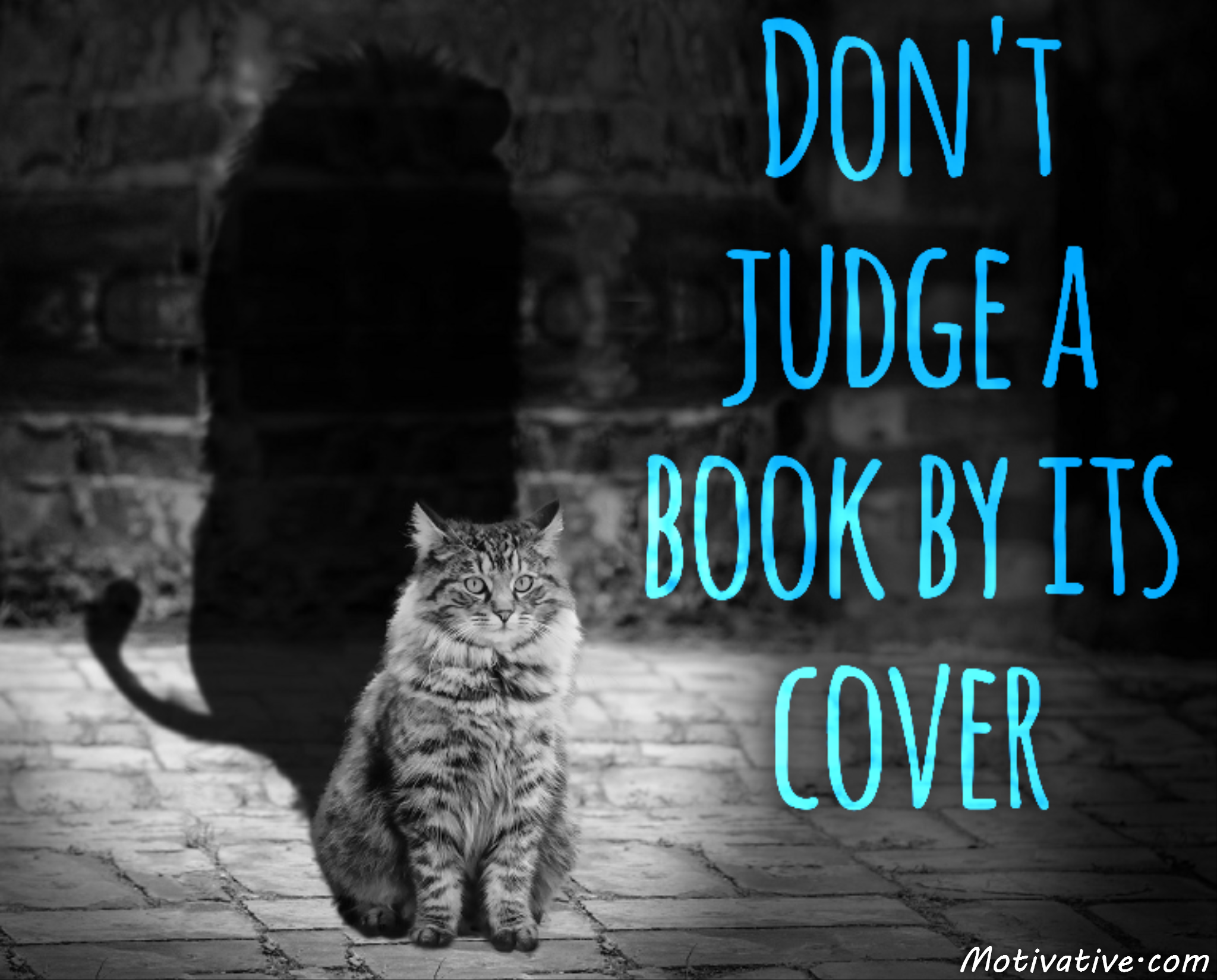 an essay on never judge a book by its cover Never judge a book by its cover this essay never judge a book by its cover and other 63,000+ term papers, college essay examples and free essays are available now on.