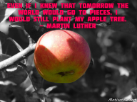 Even if I knew that tomorrow the world would go to pieces, I would still plant my apple tree. – Martin Luther