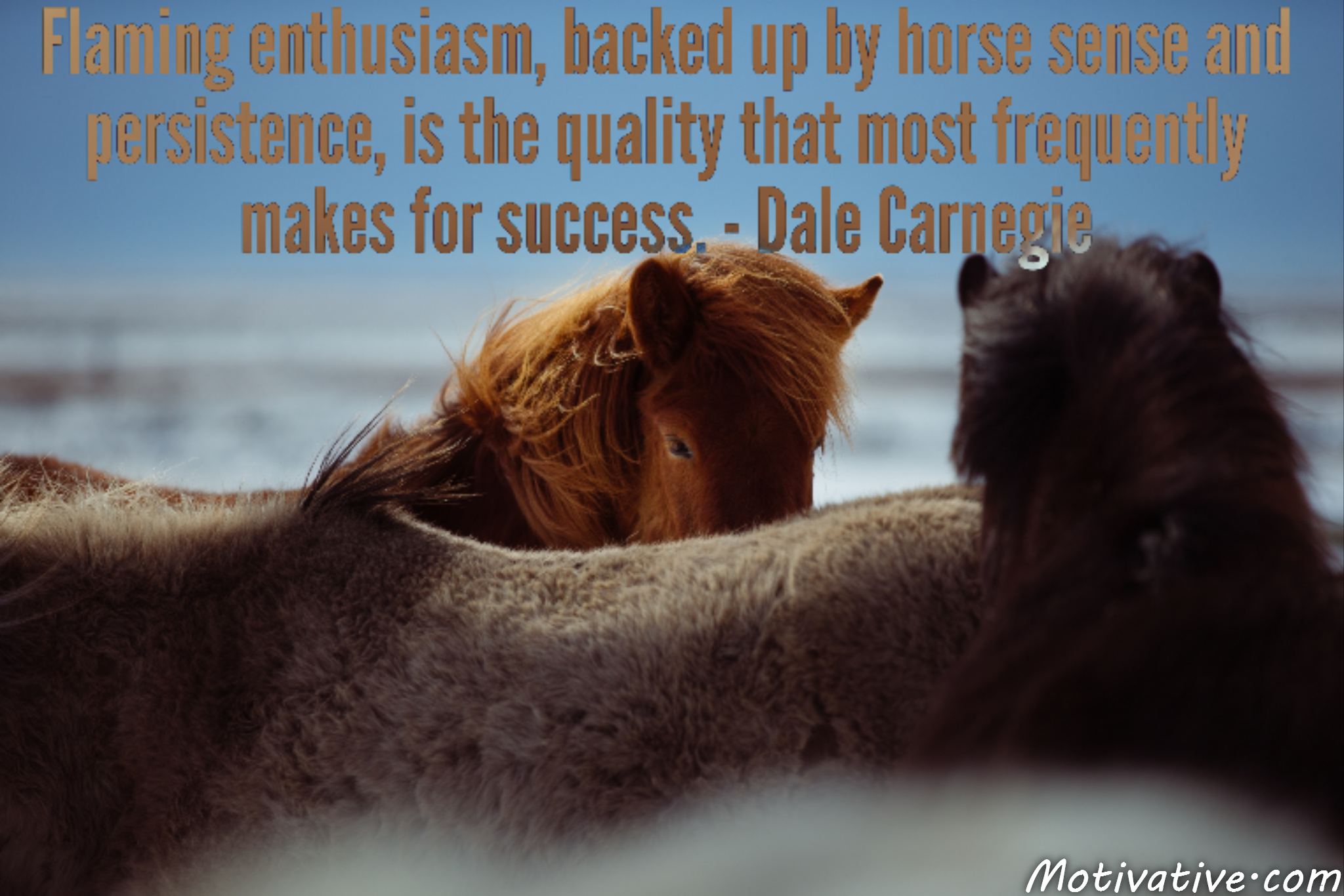 Flaming enthusiasm, backed up by horse sense and persistence, is the quality that most frequently makes for success. – Dale Carnegie
