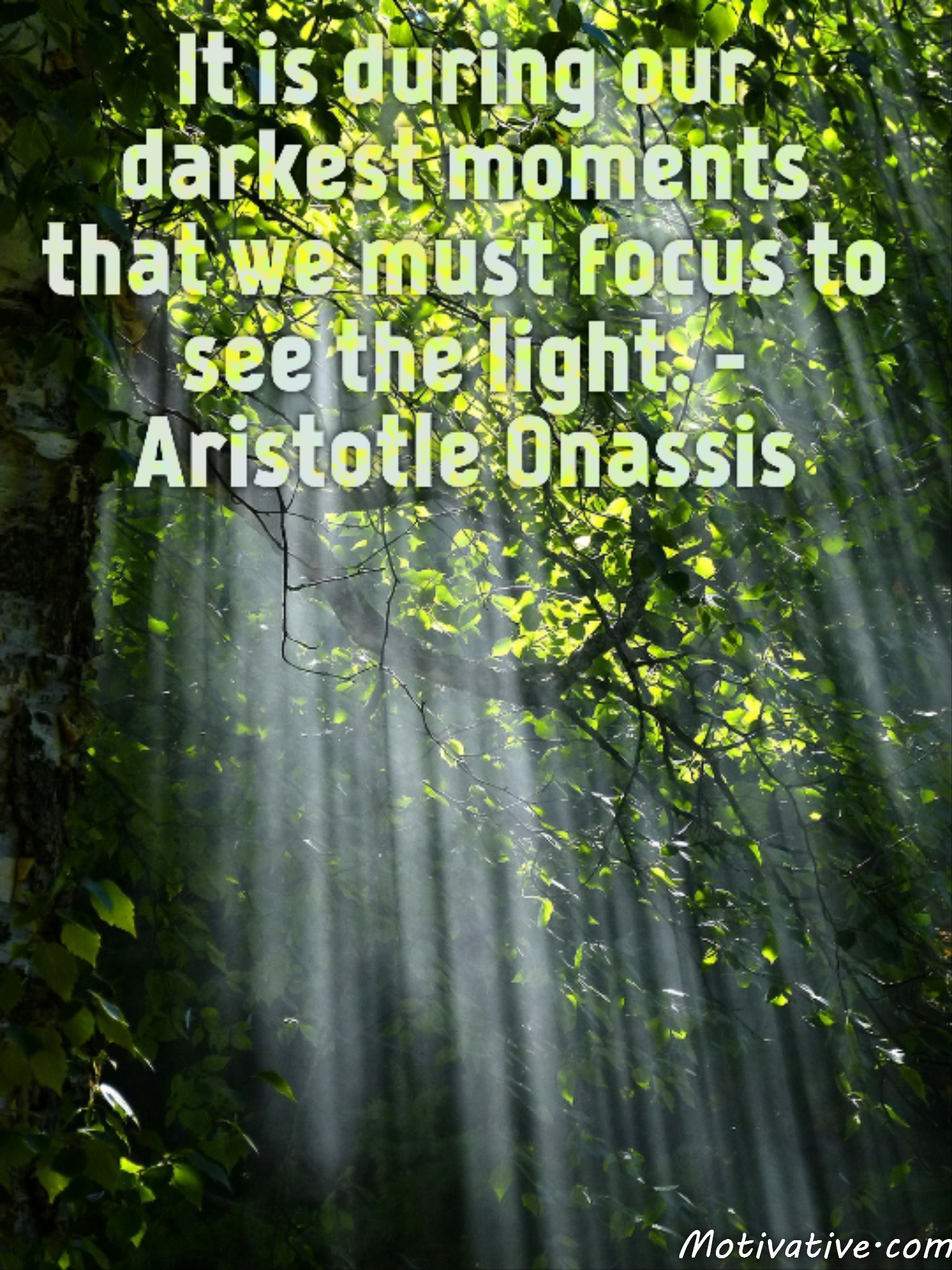 It is during our darkest moments that we must focus to see the light. – Aristotle Onassis