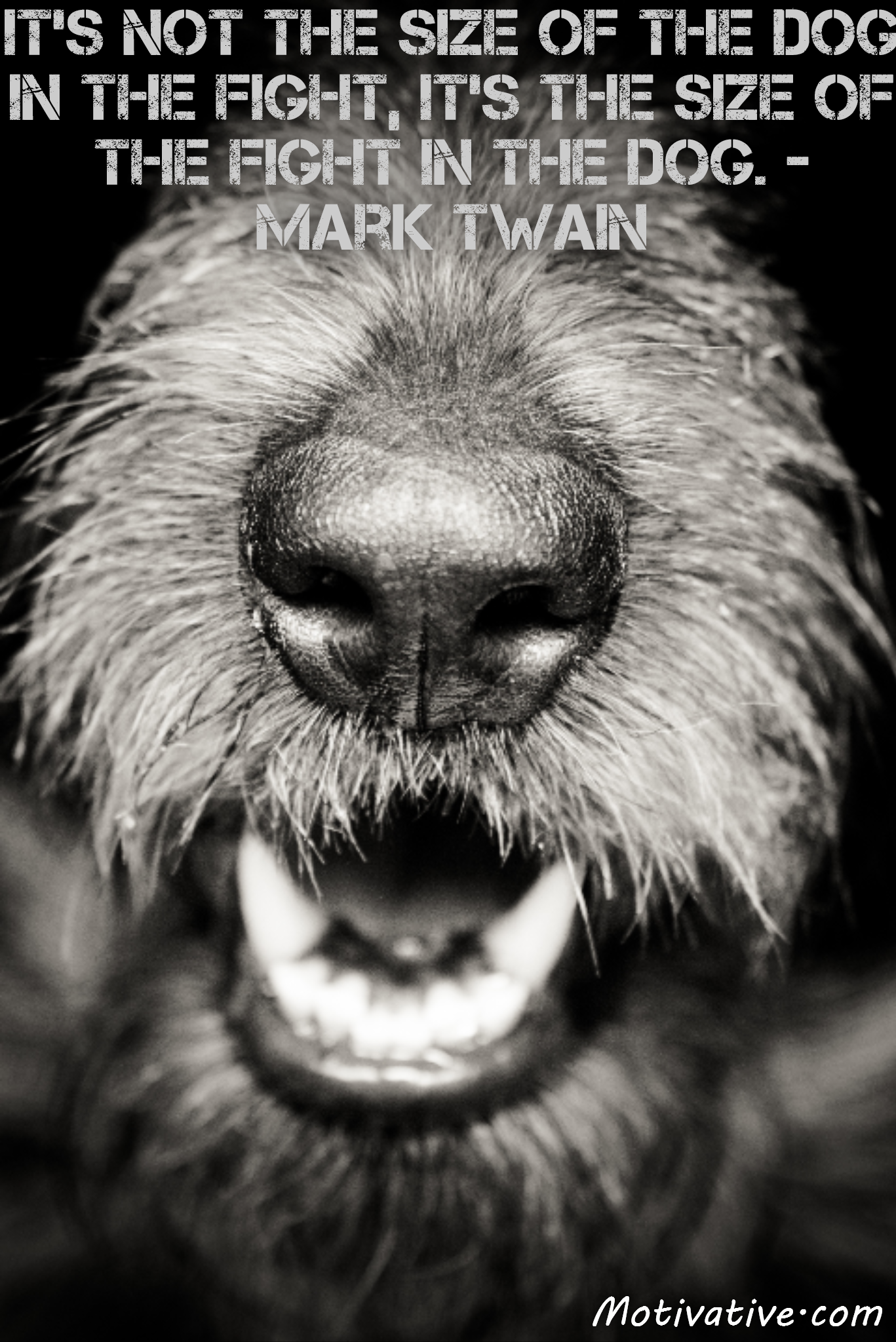It's not the size of the dog in the fight, it's the size of the fight in the dog. – Mark Twain