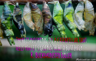 There is nothing in a caterpillar that tells you it's going to be a butterfly. – R. Buckminster Fuller