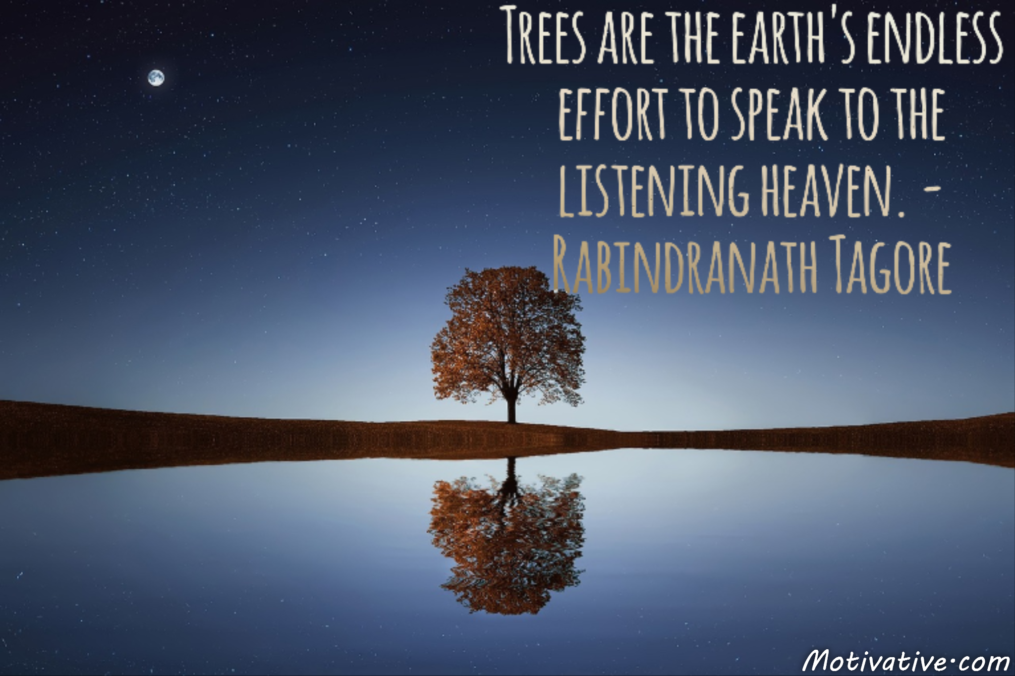 Trees are the earth's endless effort to speak to the listening heaven. – Rabindranath Tagore