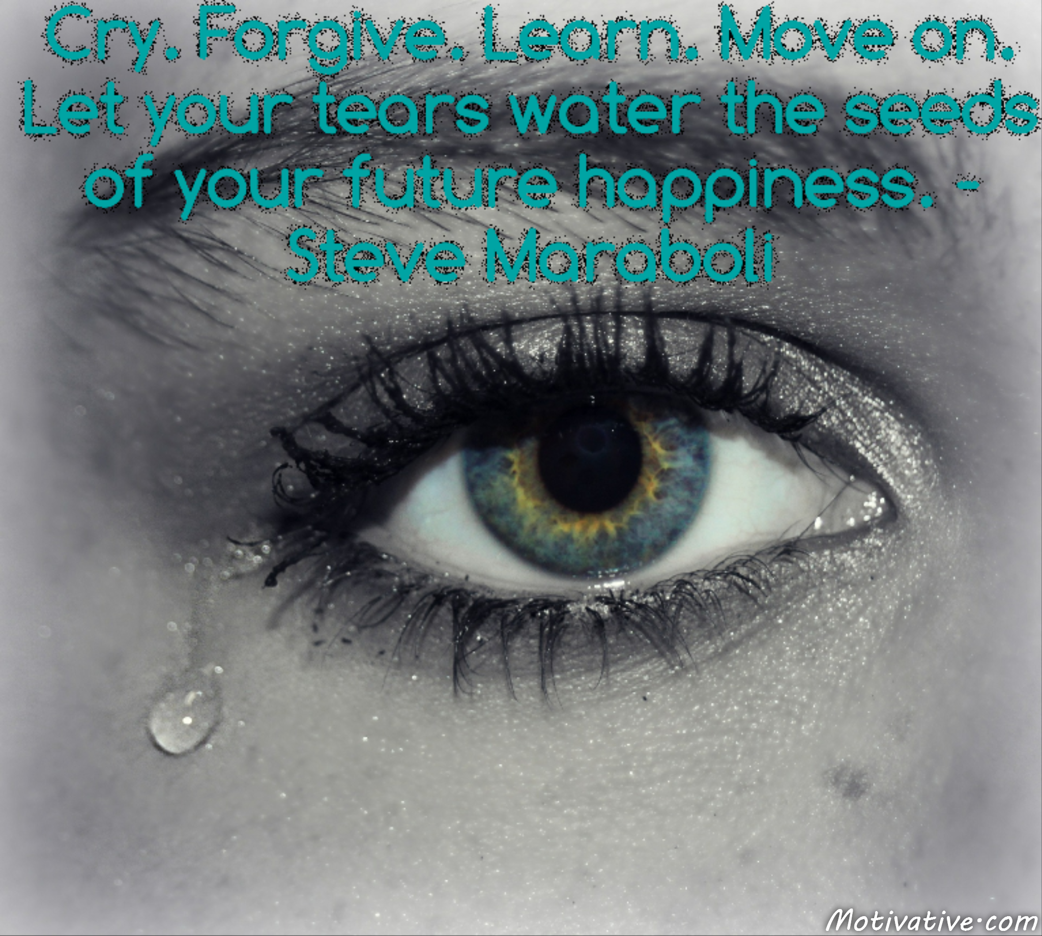 Cry. Forgive. Learn. Move on. Let your tears water the seeds of your future happiness. – Steve Maraboli