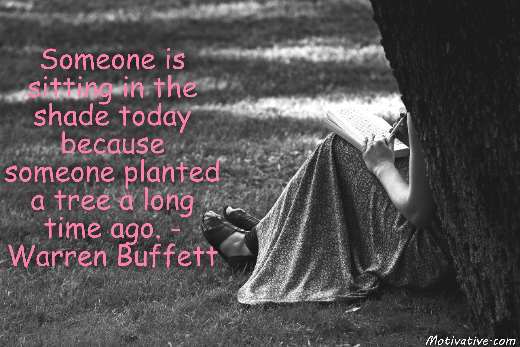 Someone is sitting in the shade today because someone planted a tree a long time ago. – Warren Buffett