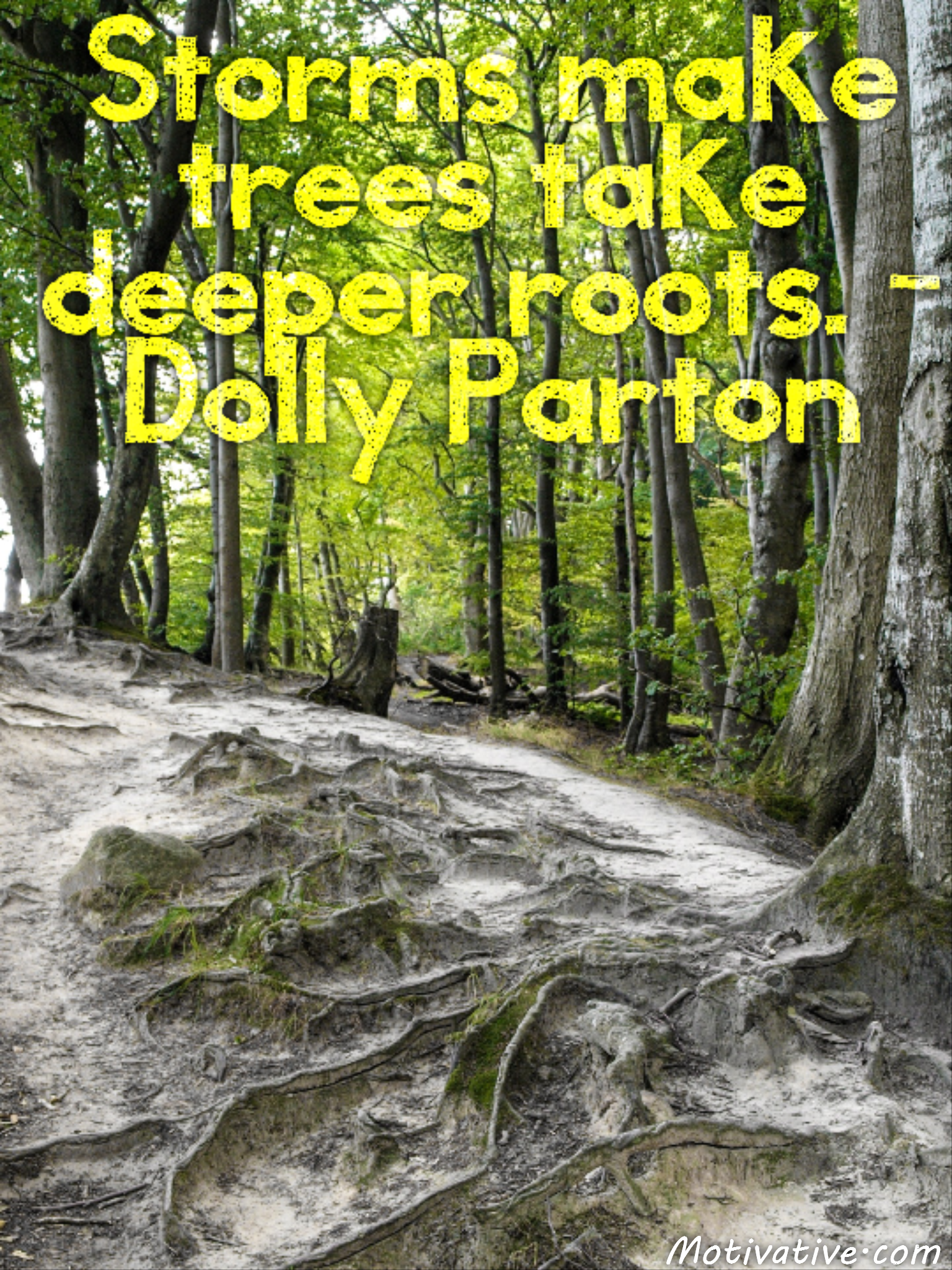Storms make trees take deeper roots. – Dolly Parton