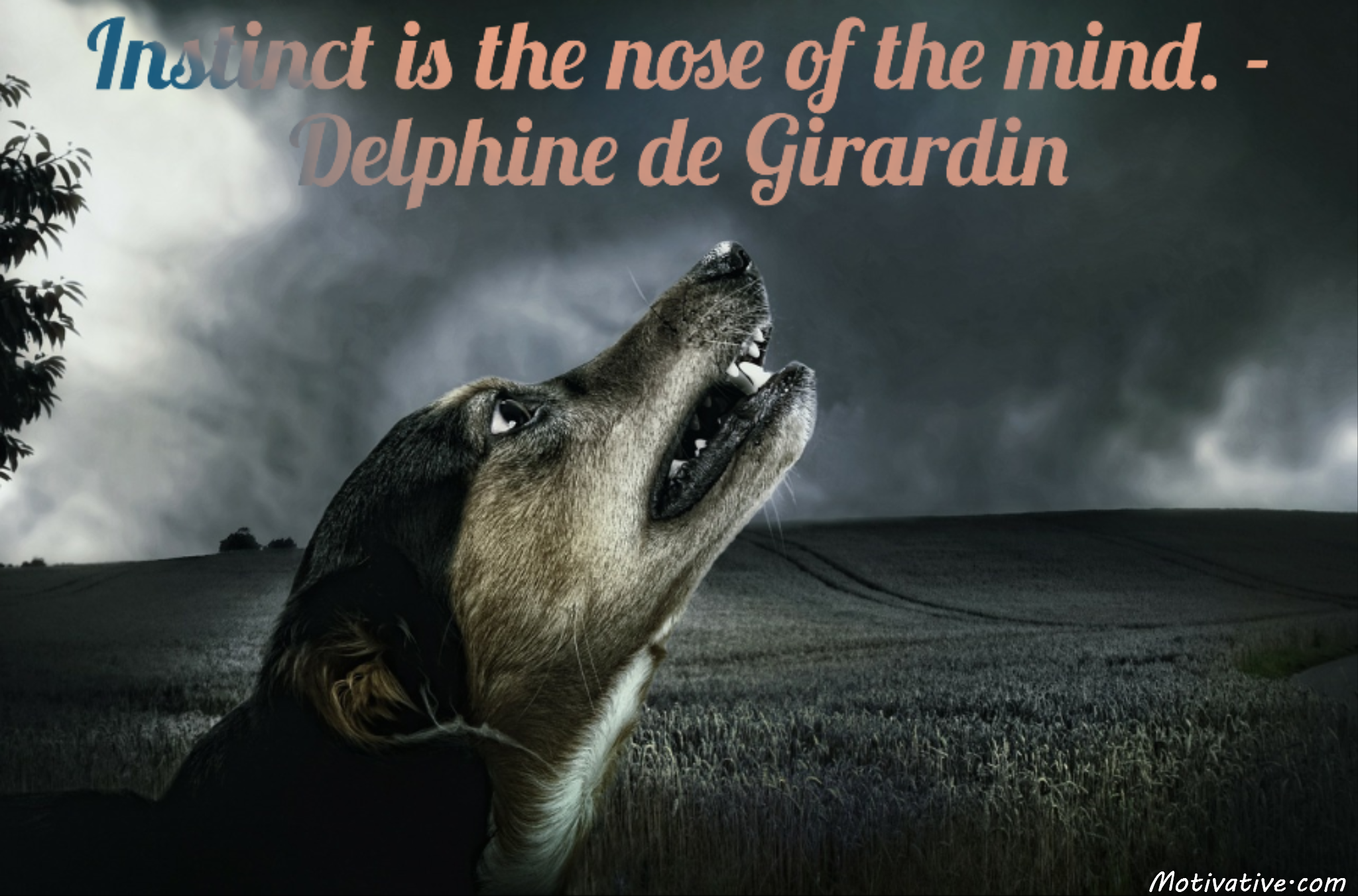 Instinct is the nose of the mind. – Delphine de Girardin