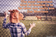 The most important kind of freedom is to be what you really are. – Jim Morrison