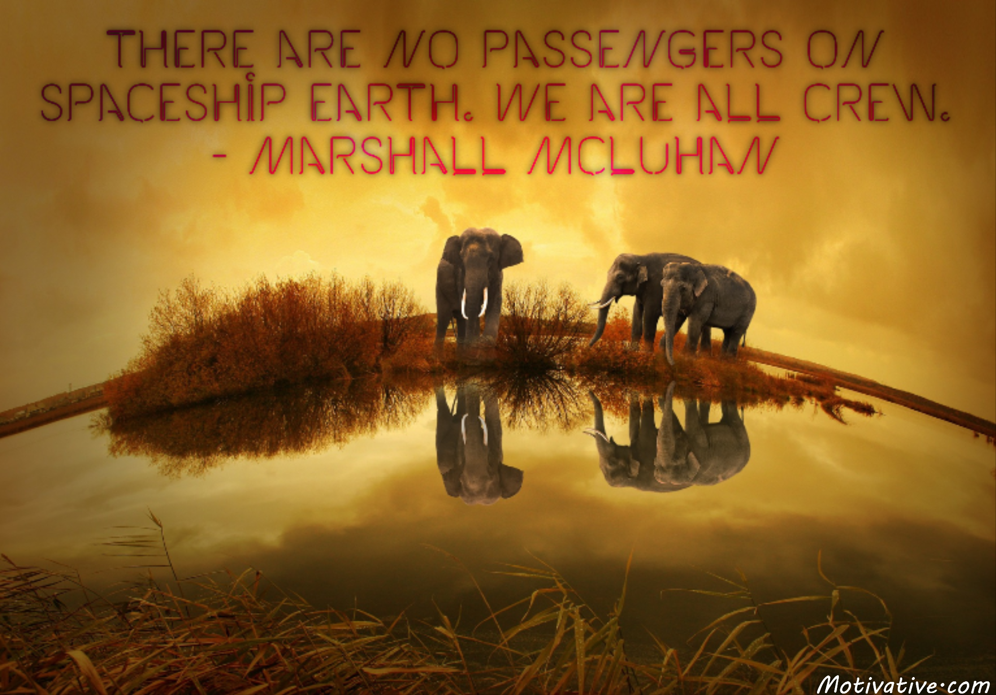 There are no passengers on spaceship earth. We are all crew. – Marshall McLuhan