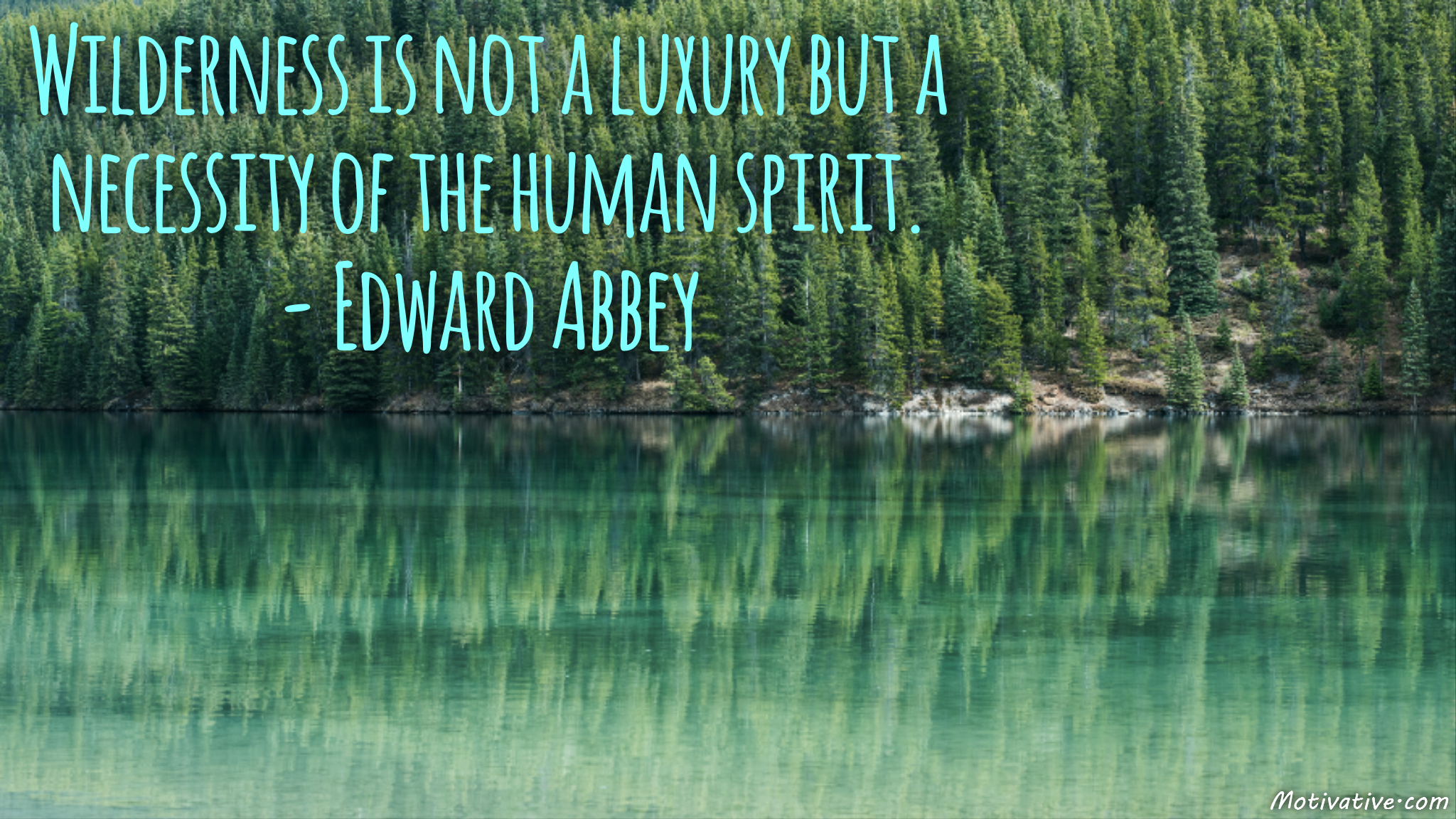 Wilderness is not a luxury but a necessity of the human spirit. – Edward Abbey