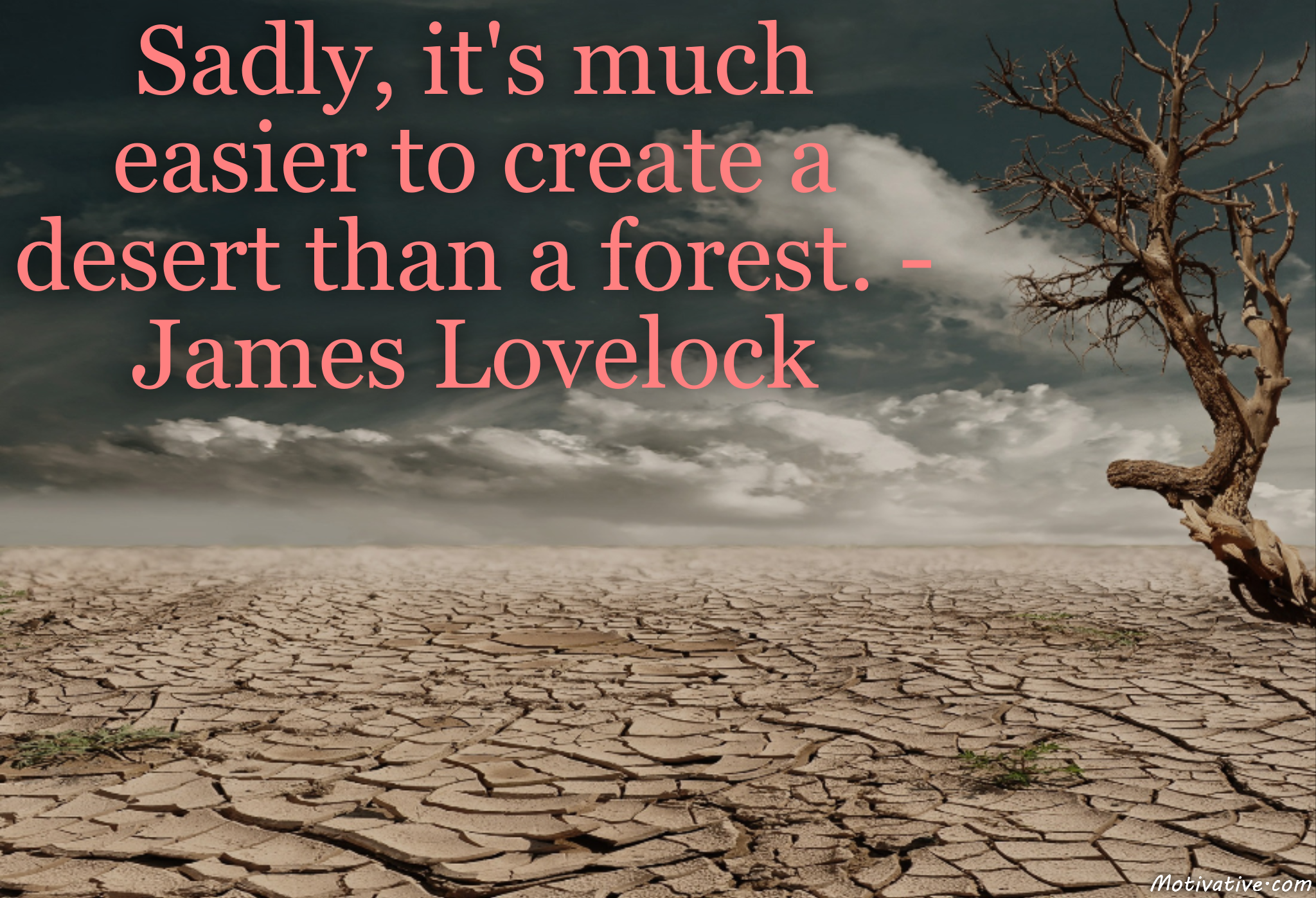 Sadly, it's much easier to create a desert than a forest. – James Lovelock