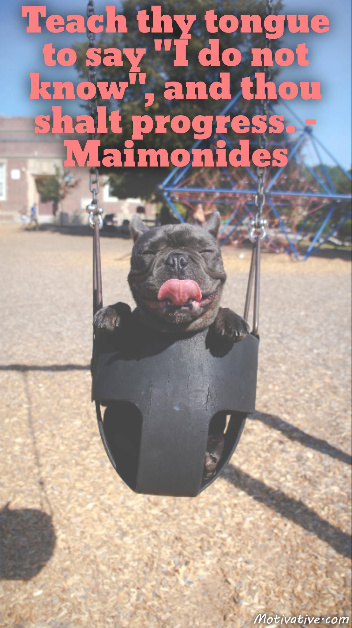 Teach thy tongue to say I do not know, and thou shalt progress. – Maimonides