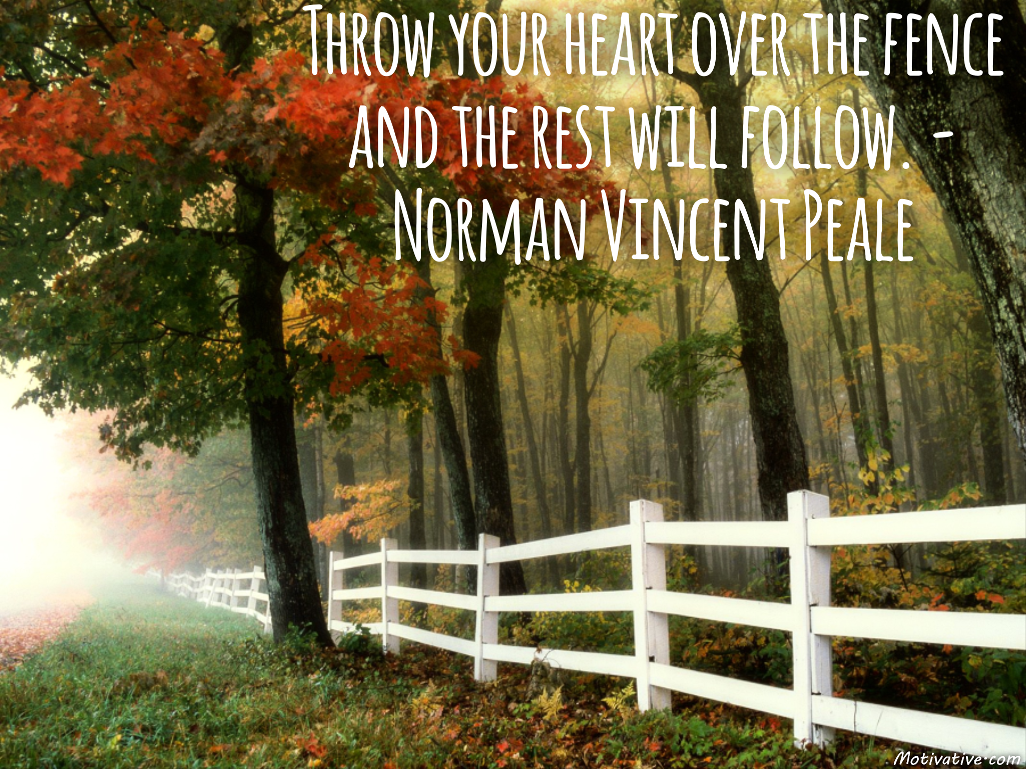Throw your heart over the fence and the rest will follow. – Norman Vincent Peale