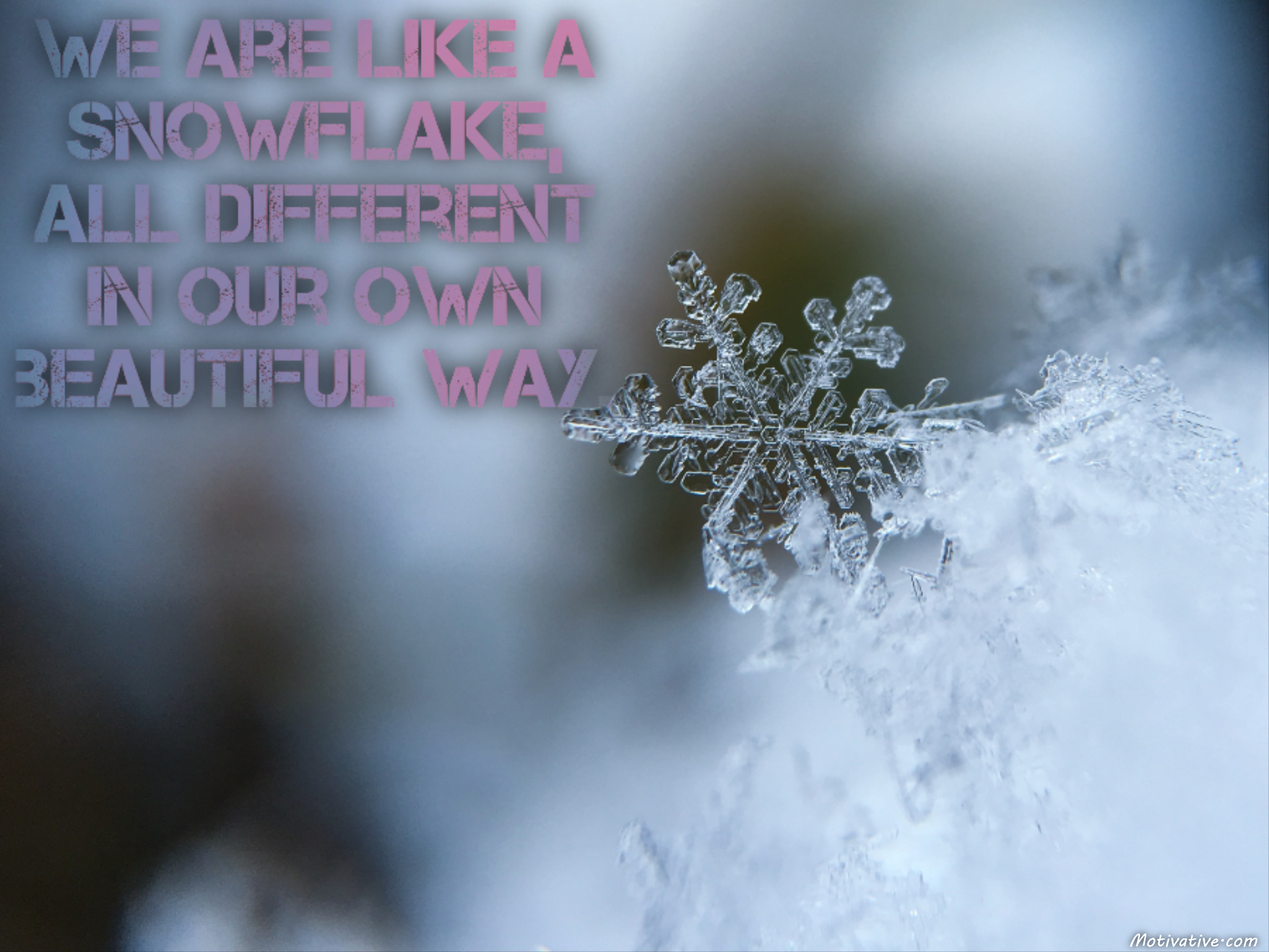 We are like a snowflake, all different in our own beautiful way.